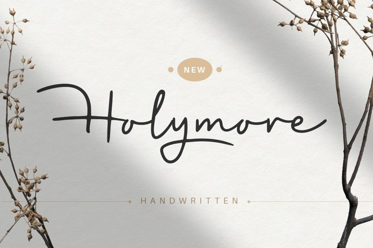 Holymore - Handwritten font example image 1
