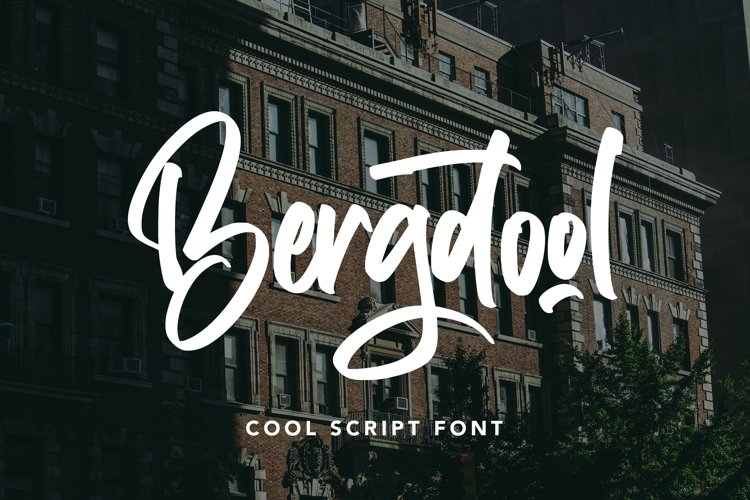 Bergdool - Cool Script Font example image 1