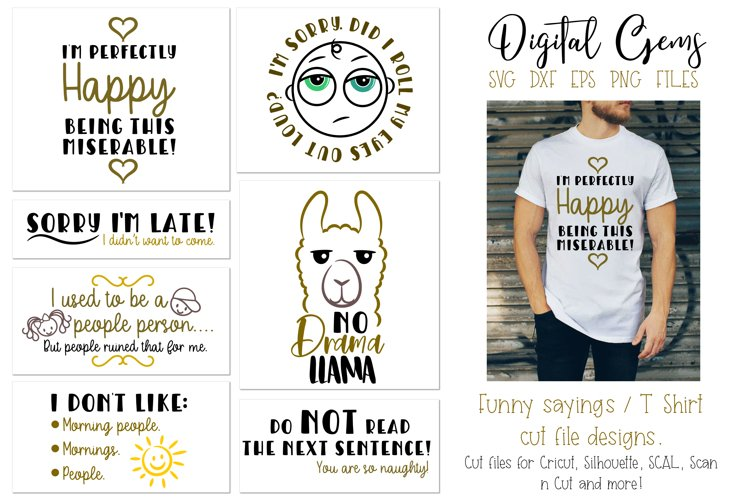 Funny quotes and sayings, T Shirt cut file designs example image 1