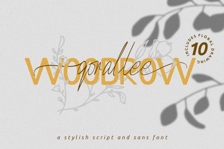 Qorallee Woodrow Font Duo Bonus example image 1