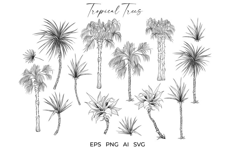 Palm Tree SVG Tropical Plants Vector Bundle