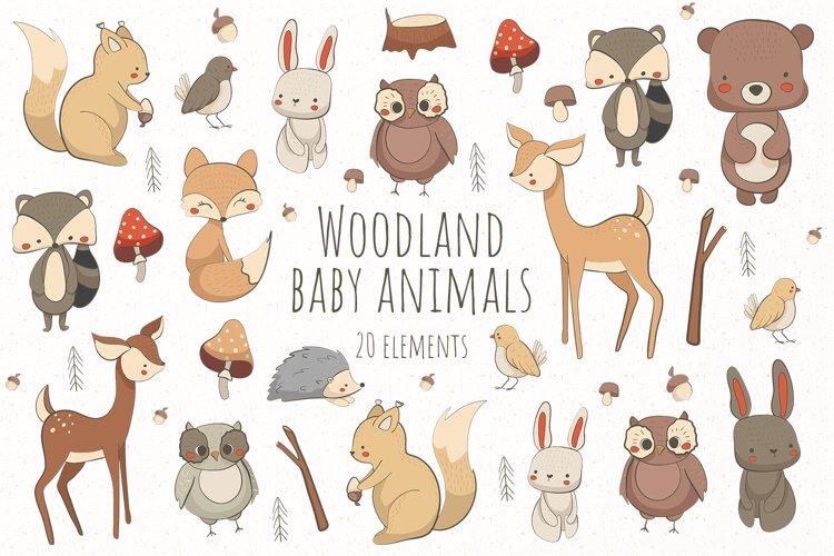 Woodland baby animals