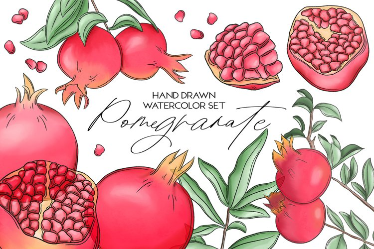 Pomegranate hand drawn clipart example image 1