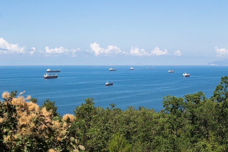 Blue sea, clouds over the horizon, and cargo ships. 3pcs example image 1