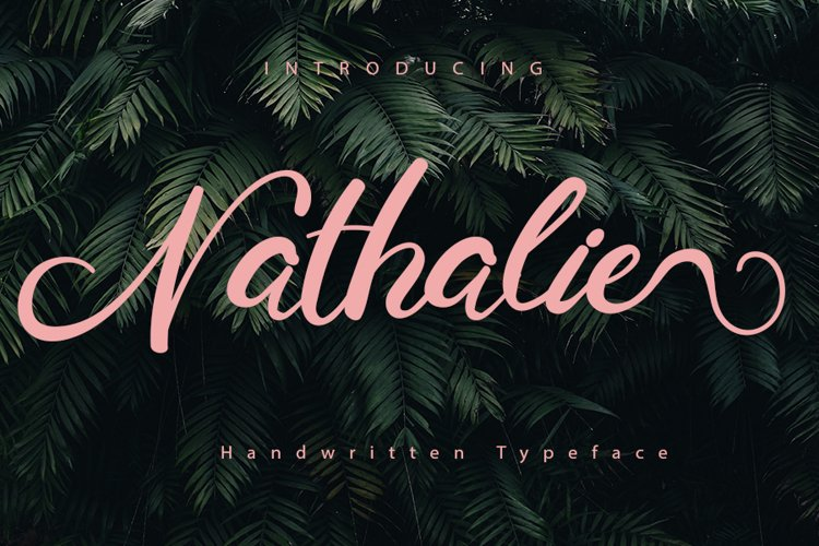 Nathalie | A Display Typeface example image 1