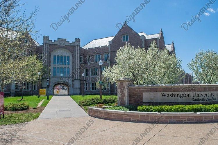 Washington University Danforth Campus St Louis example image 1