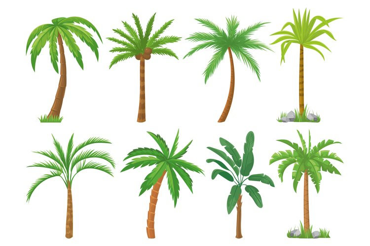 Palm trees. Tropical tree green leaves, beach palms and retr example image 1