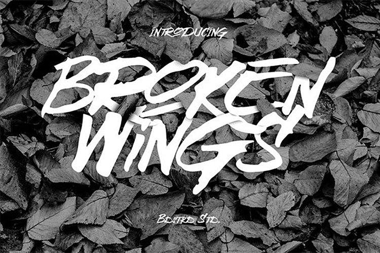 Broken Wings Typeface example image 1