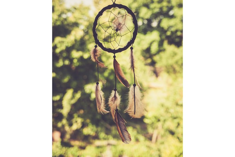 Dreamcatcher in the woods example image 1