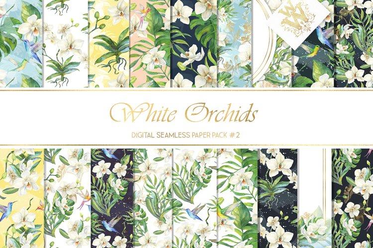Watercolor flower orchid seamless pattern, summer backdrop