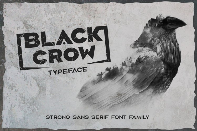 Black crow. Strong sans-serif family example image 1