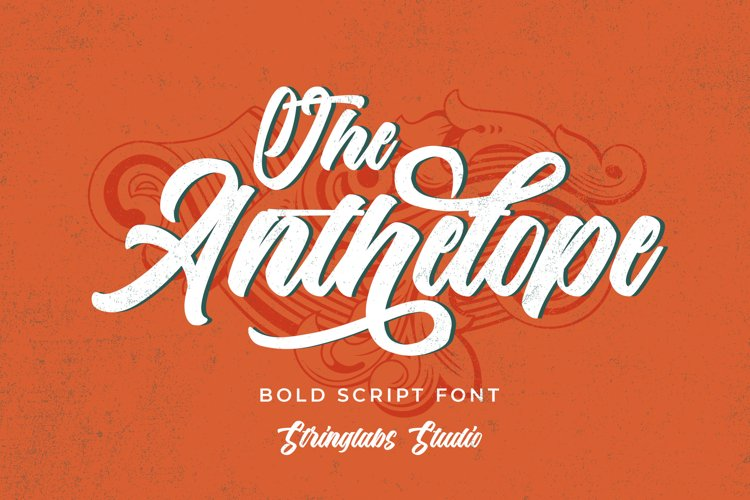 The Anthelope - Retro Bold Script Font example image 1