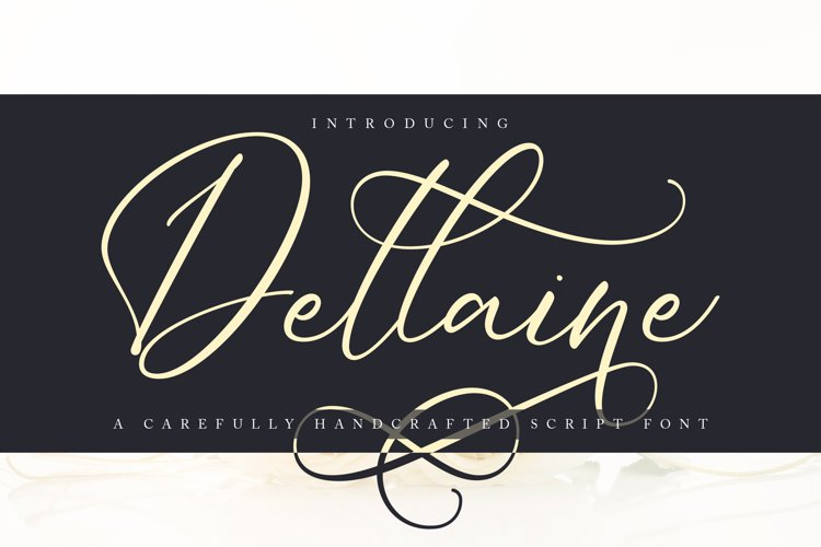 Dellaine | A Carefully Handcrafted Script Font example image 1