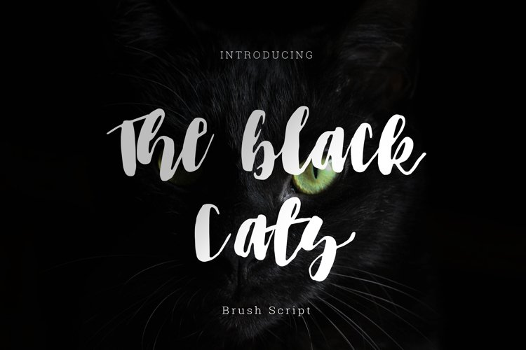 The black cats brush Script example image 1