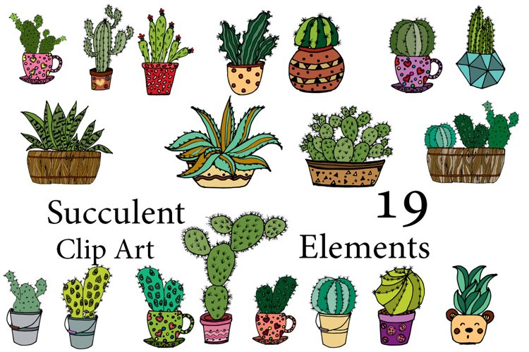Succulent Vector Clipart example image 1