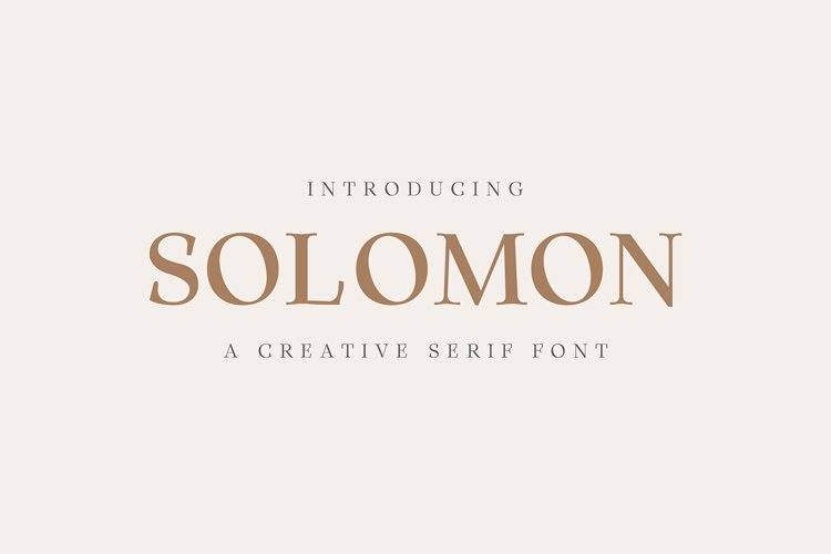 Solomon Serif Font Family example image 1