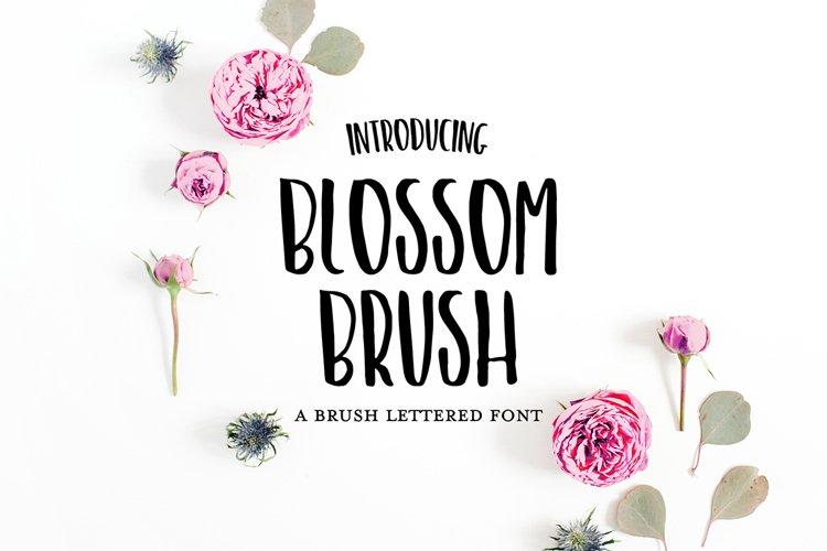 BLOSSOM BRUSH Sans Hand Lettered Font example image 1