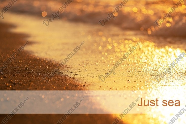 Golden sea coast in the sunset. Background with nice bokeh