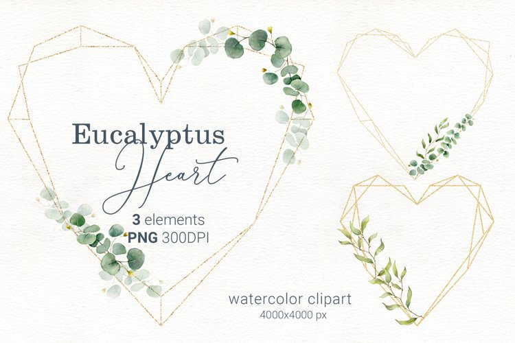 Eucalyptus watercolor wreath, floral heart