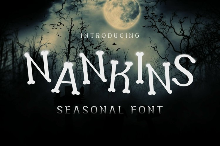 Web Font Nankins Font example image 1