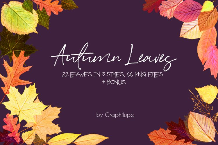Autumn Leaves - Handcrafted Illustration Kit example image 1