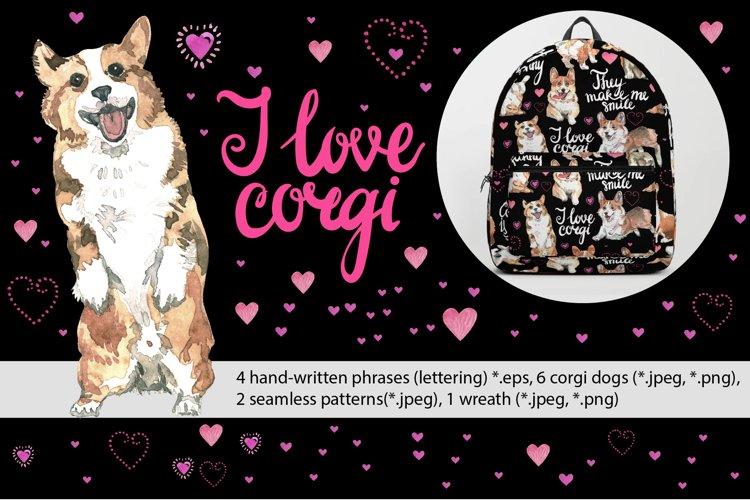 I live corgi