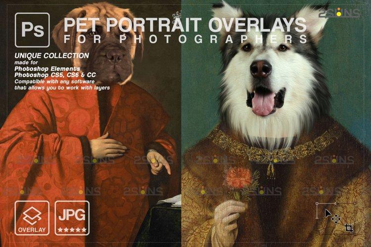 Royal Pet Portrait templates vol.19 example image 1