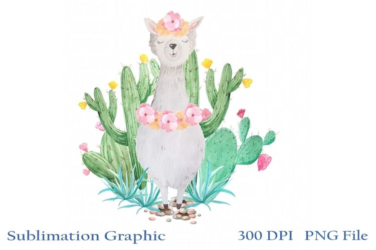 Spring Llama with Cactus PNG