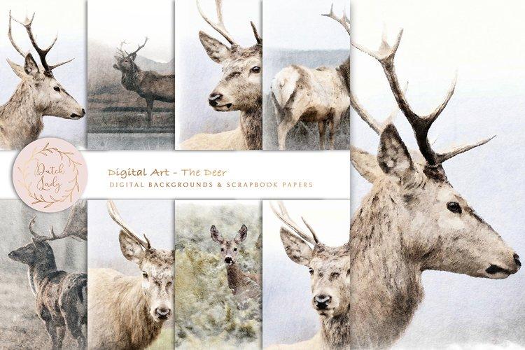 Digital Paintings - The Deer