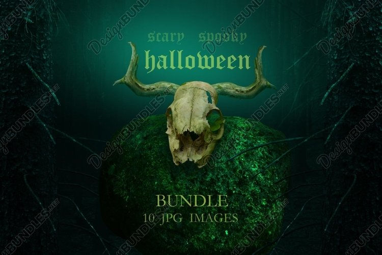 Halloween Bundle 10 jpg images / Scary spooky fantasy pics