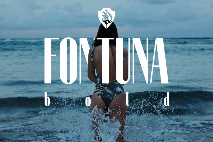 Fontuna bold example image 1