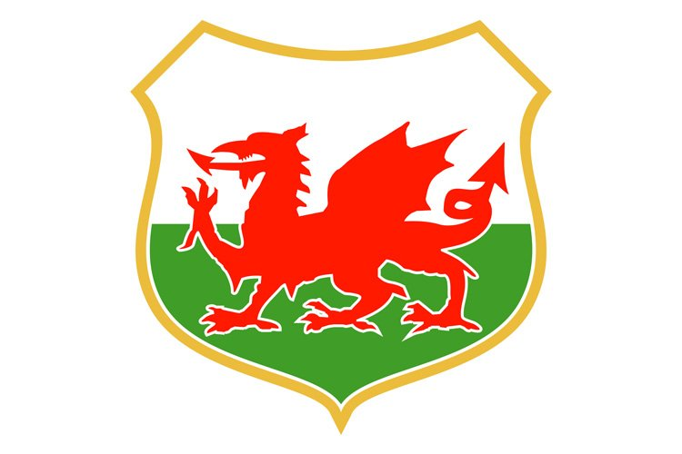 red welsh dragon example image 1