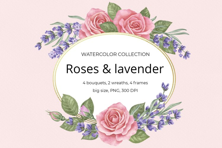Roses & lavender. Watercolor clipart