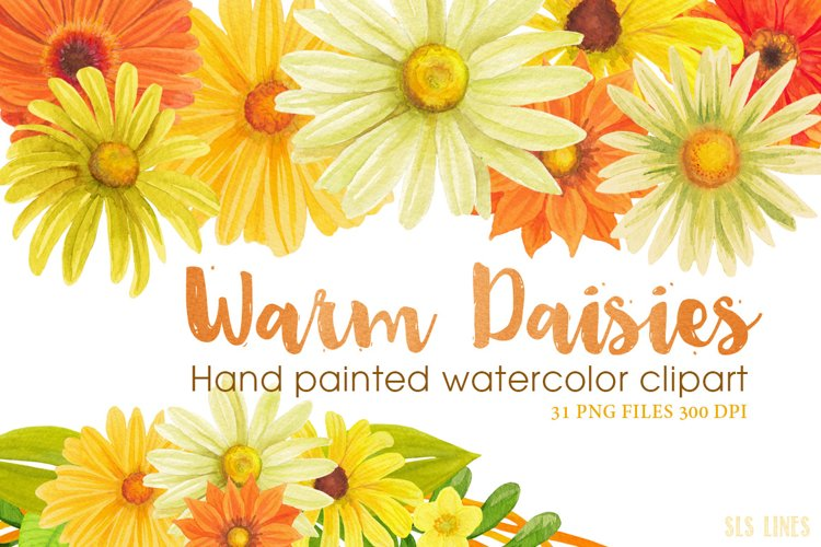 Warm Yellow & Orange Daisies, Watercolor PNG example image 1