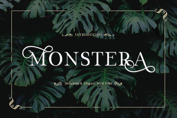 Monstera example image 1