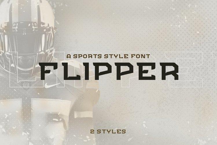 FLIPPER - NFC Font Family example image 1