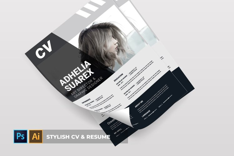 Stylish   CV & Resume example image 1