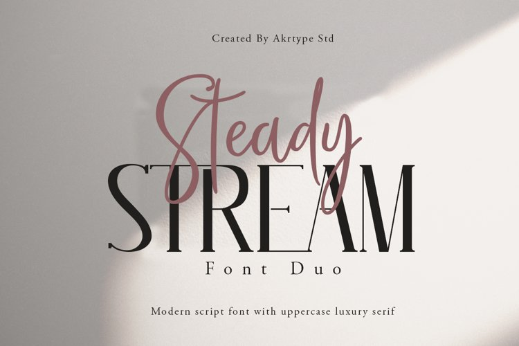 Steady Stream Font Duo example image 1