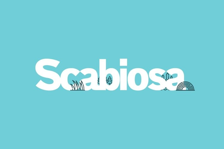 Web Font Scabiosa example image 1