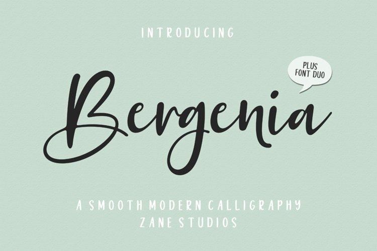 Bergenia Script FONT DUO example image 1