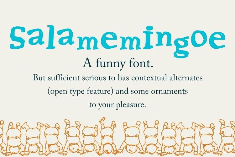 Salamemingoe example image 1