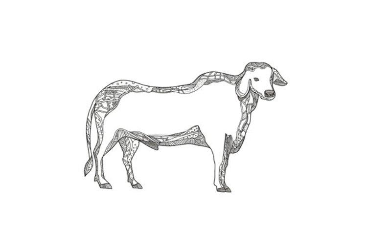 Brahman Bull Side Doodle Side example image 1