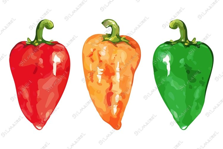 Watercolor sweet bell Bulgarian pepper vegetable set isolate example image 1