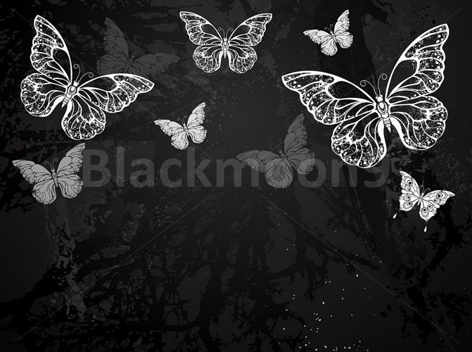 Butterflies Drawn in Chalk example image 1