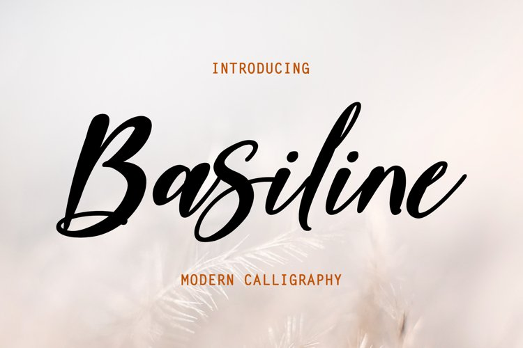Basiline