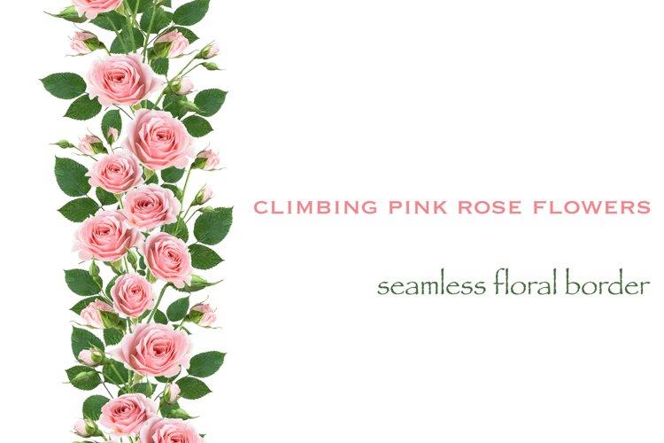 Pink rose flowers seamless border pattern