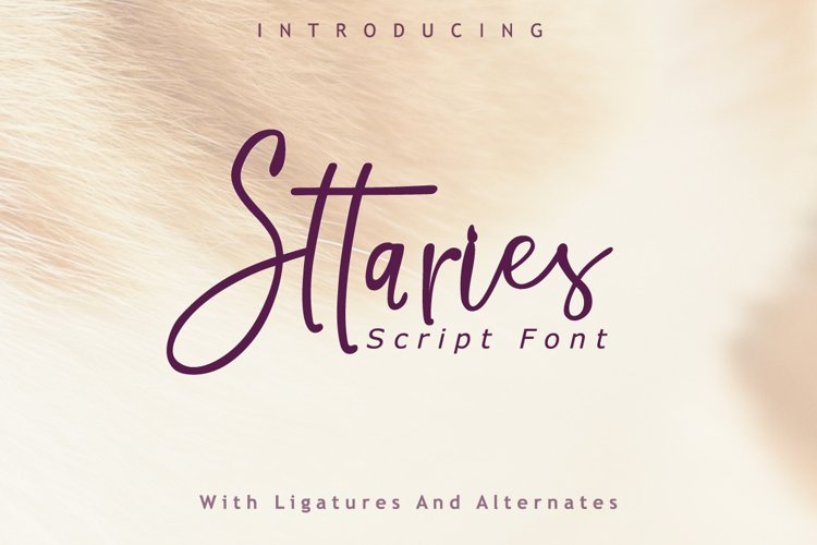 Sttaries Font example image 1