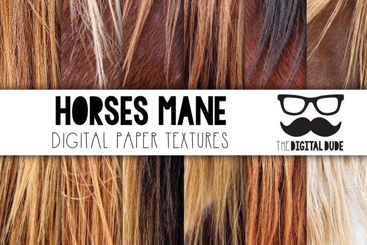 Horses Mane - Digital Papers Set of 12 Images example image 1