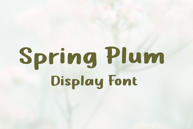 Spring Plum - Display Font