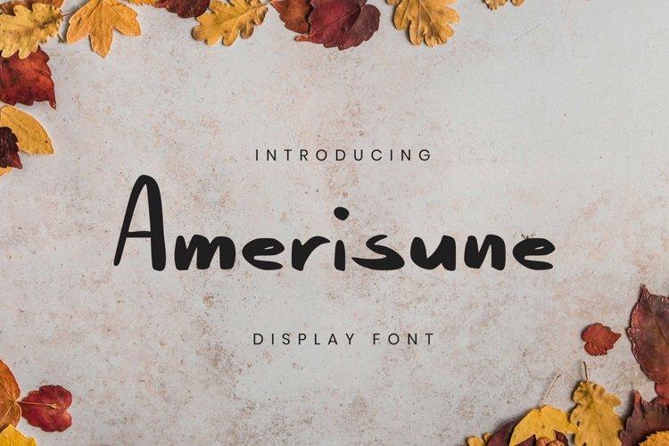 Web Font Amerisune Font example image 1